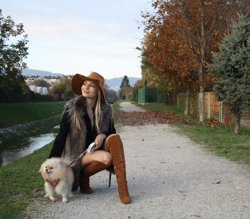 knee-high boots zara, pomeranian dog, suede hat, zara